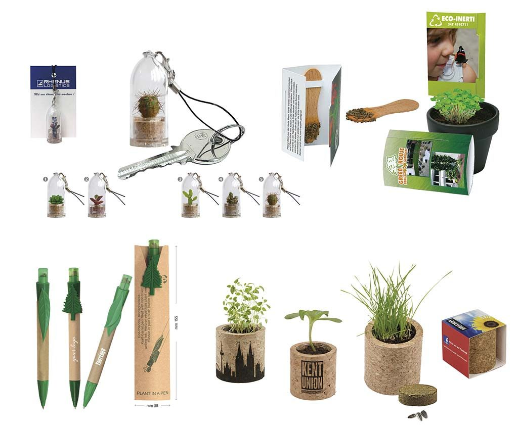 green line semi e piante